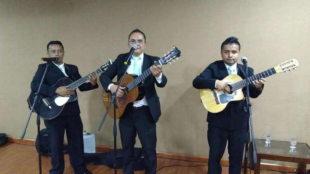 Serenatas de cuerda,trío musical,música popular,misas,