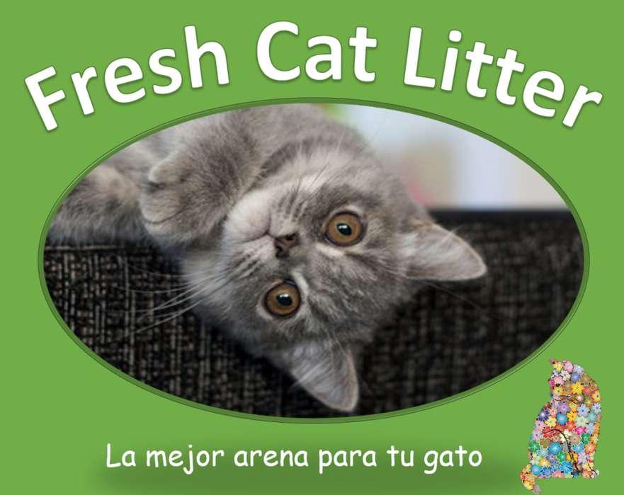 Excelente Arena para Gato - Bentonita aglomerante con olor
