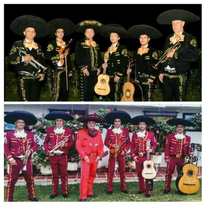 mariachis rionegro 3197784818