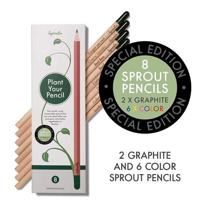 Lápices plantables Sprout, última caja importada de 8 unidades