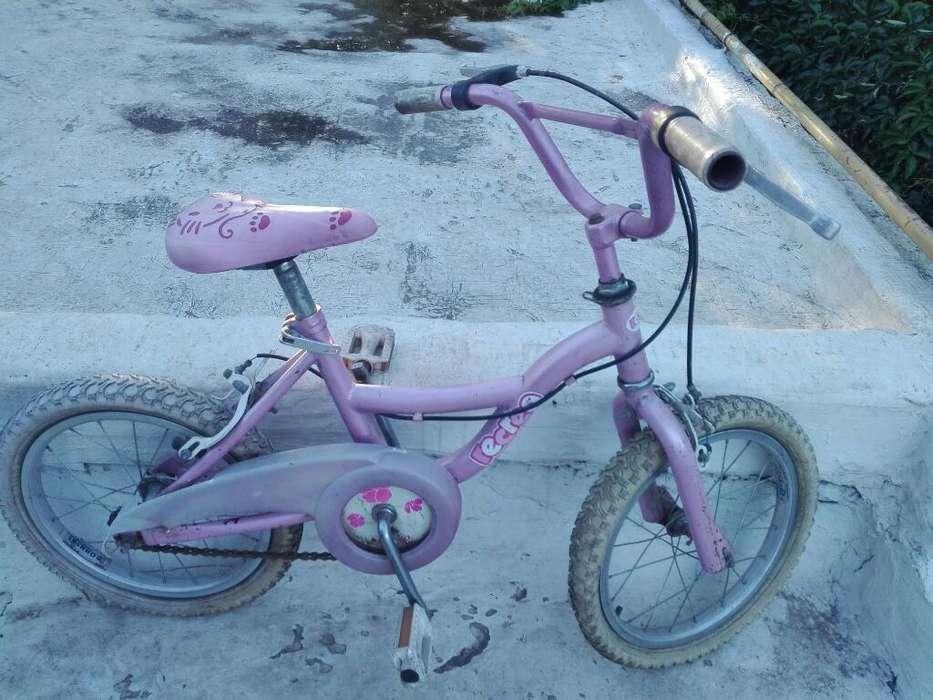 Bicicleta Recreo