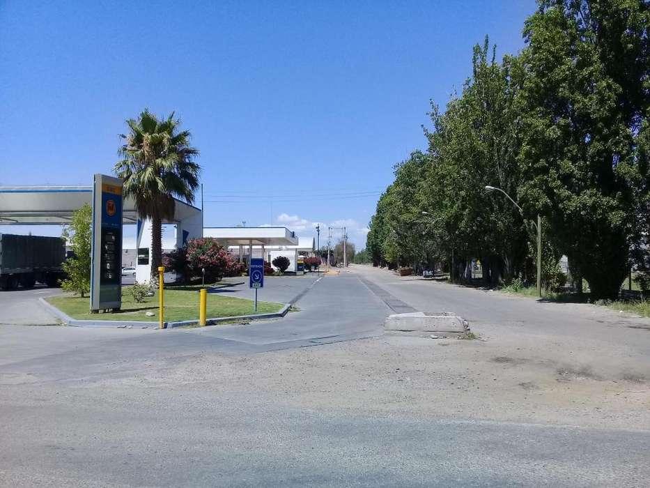 EXCELENTE OPORTUNIDAD!!! Vendo <strong>campo</strong>/terreno de 3 hectáreas en Mendoza