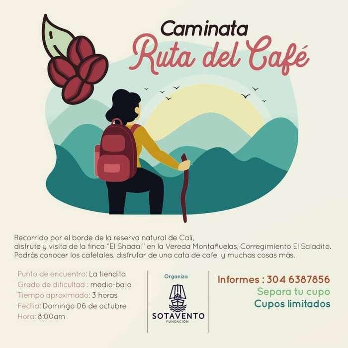 Caminata RUTA DEL CAFE