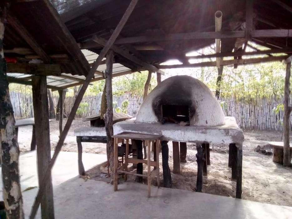 Casa Lote Palmita Huila