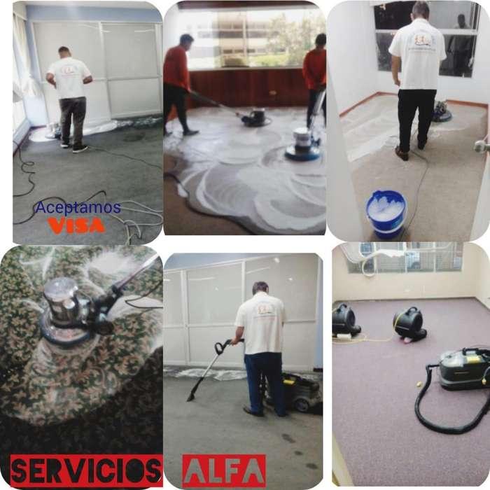 para servicio limpieza alfombra