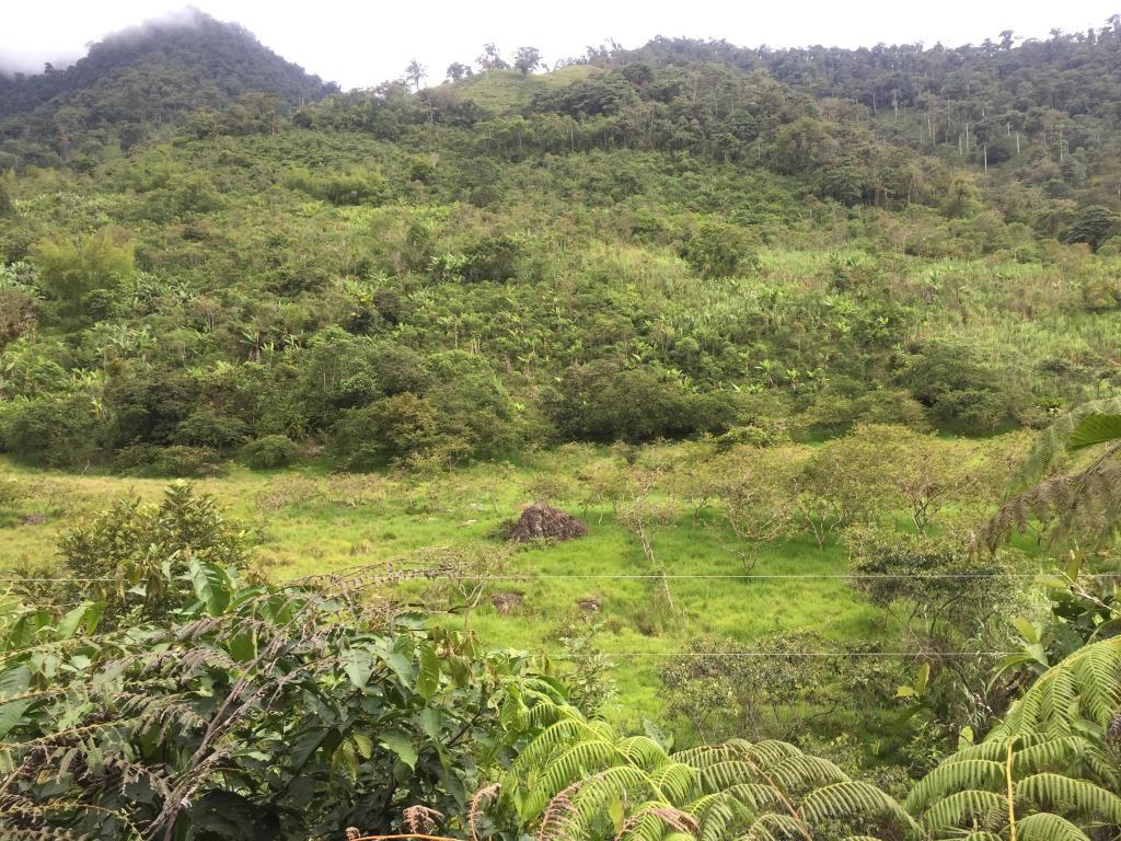Hacienda en la provincia del Carchi