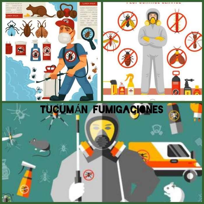 Fumigación Domiciliaria Y Comercial