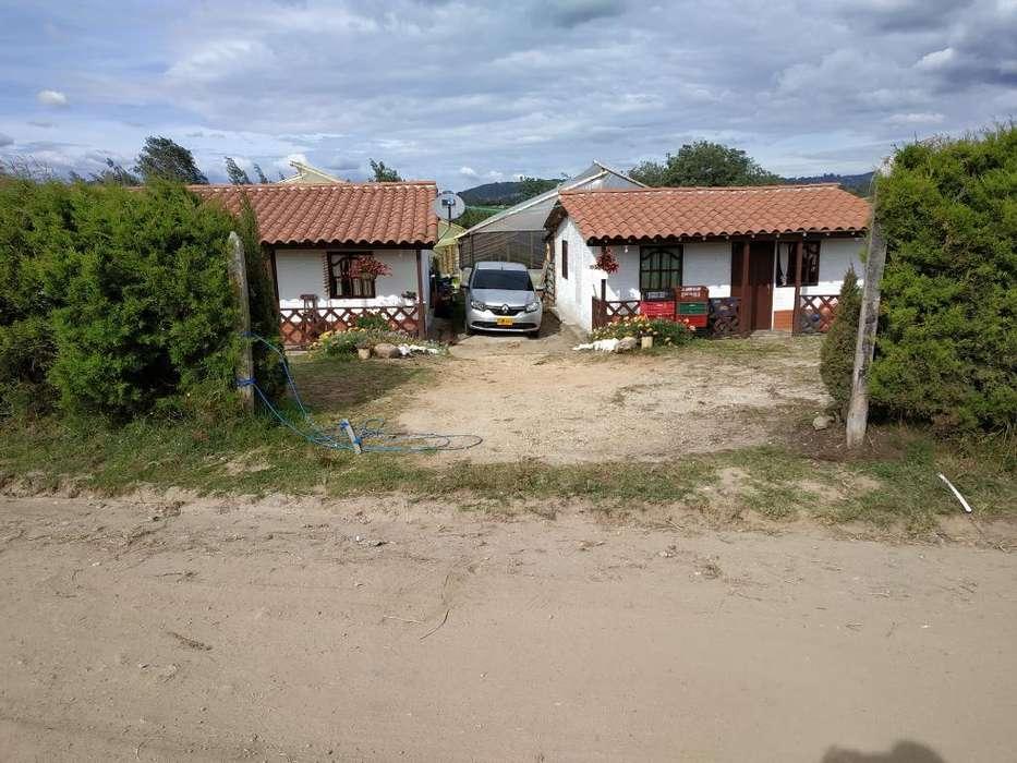 2 Casa Fincas con Cultivo Hidropónico