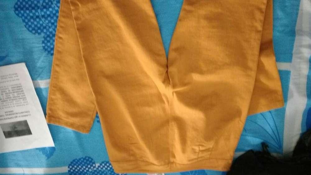 Pantalon Carmel Talla 14