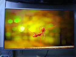 Televisor Lg Smart Tv Si Tdt Ganga