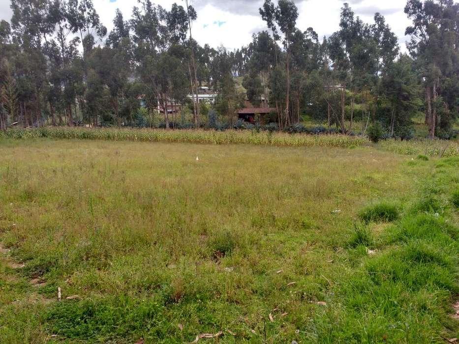 Venta de 2 terrenos a180 soles en metro cajamarca