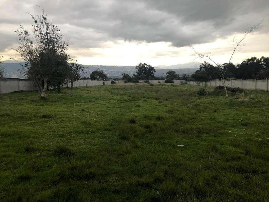 Se vende terreno plano en Tumbaco, sector la Tola, Ruta Viva