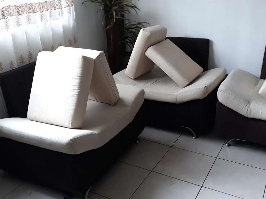 Desmanche Y Desinfección de Muebles