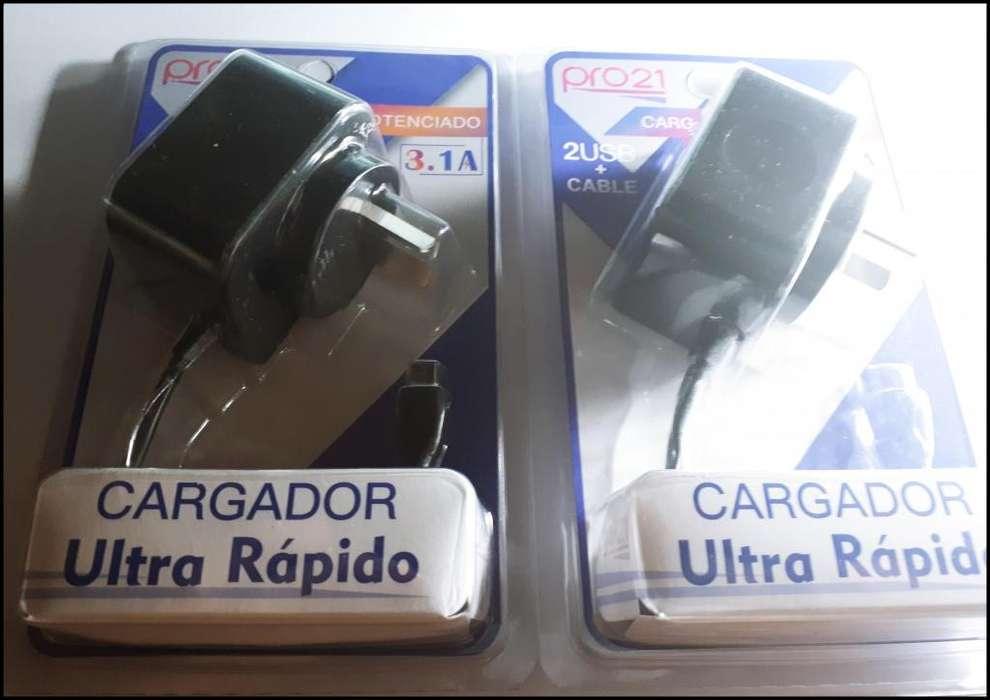 Cargador Ultra Rapido 220v Pro21