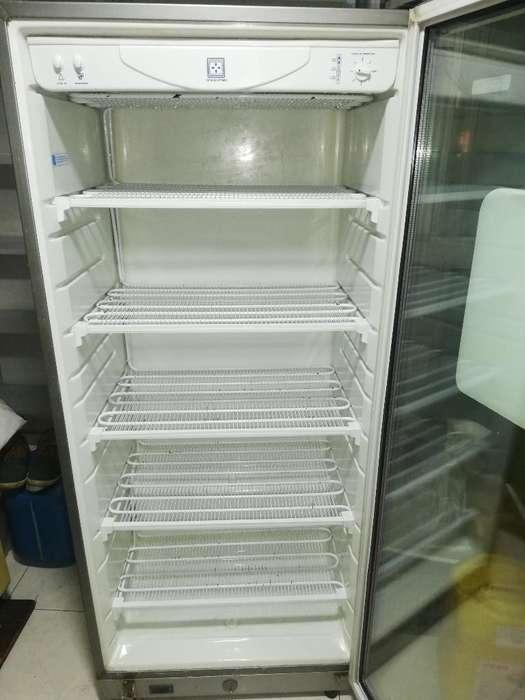 Congelador Vertical Poco Uso
