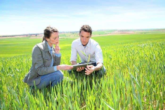 Ingeniero Agrónomo para Ventas Agrícolas