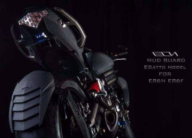 Guardabarro Kawasaki ER6 NF Indestructible