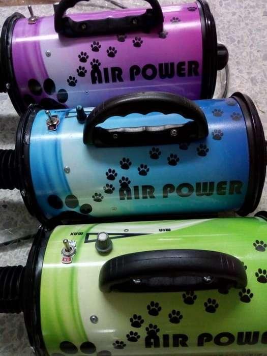 Sopladores para Peluquería Canina