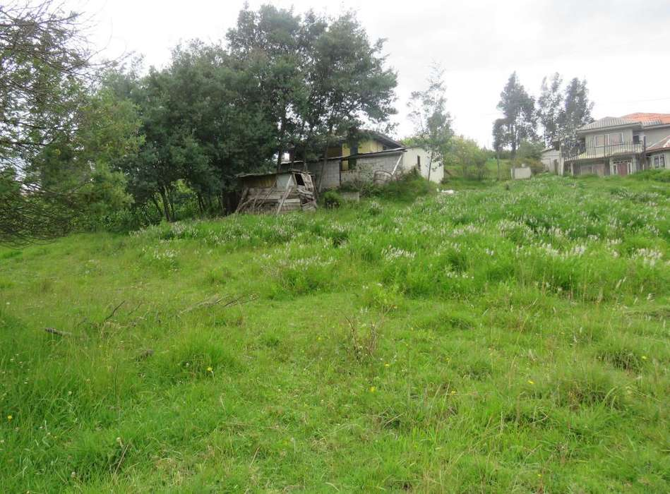 En Cuenca, El Despacho venta de amplio terreno, sitio en venta en Cuenca