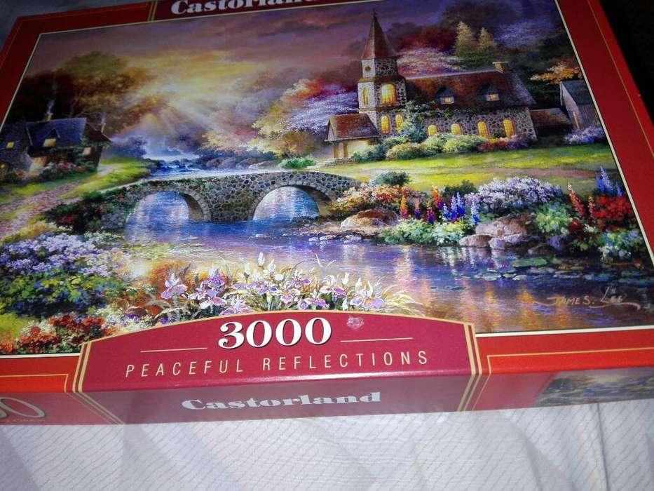 Rompecabezas 3000 Piezas