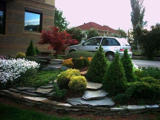 Jardinería general, arreglos de jardín, frutales, ornamentales, prado trenza, Bermuda,