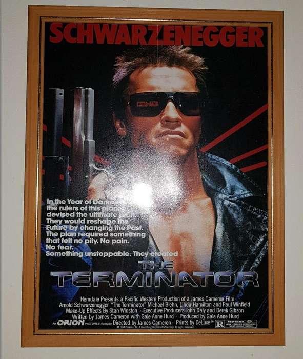 Cuadro Terminator La Plata