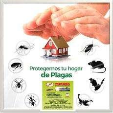 Fumigaciones, control de plagas y desratizaciones.
