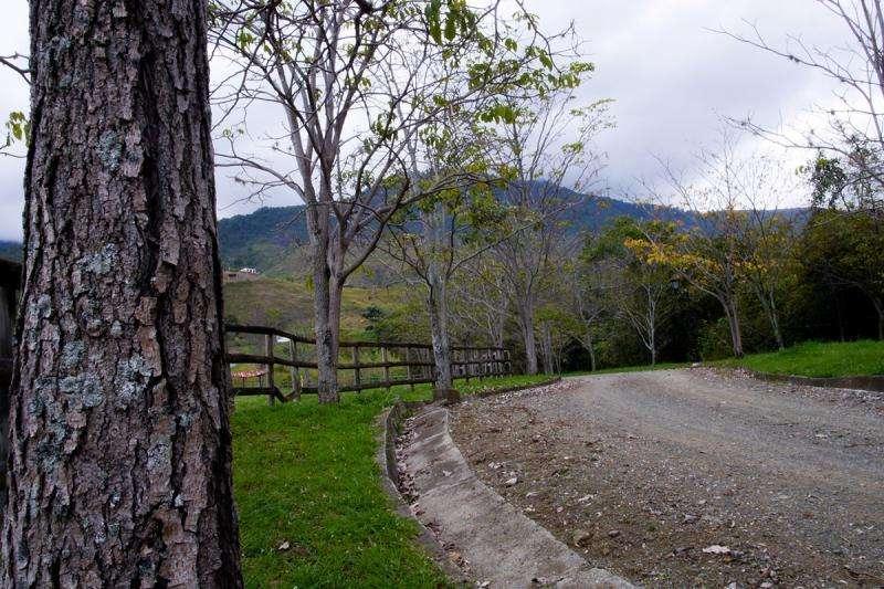 Lote En Venta En El Cerrito Parcelación La Romelia Cod. VBJMI6426