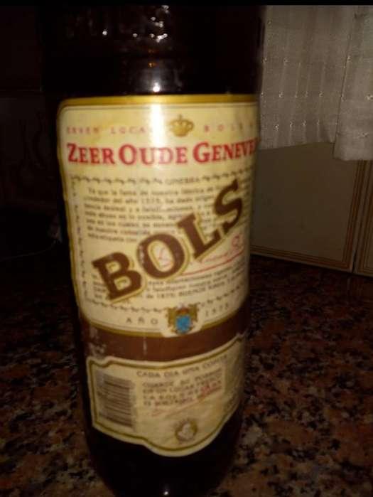 Botella Antigua de Ginebra Bols