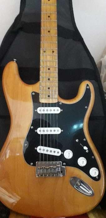 Guitarra Sx Alder con Mics Dc