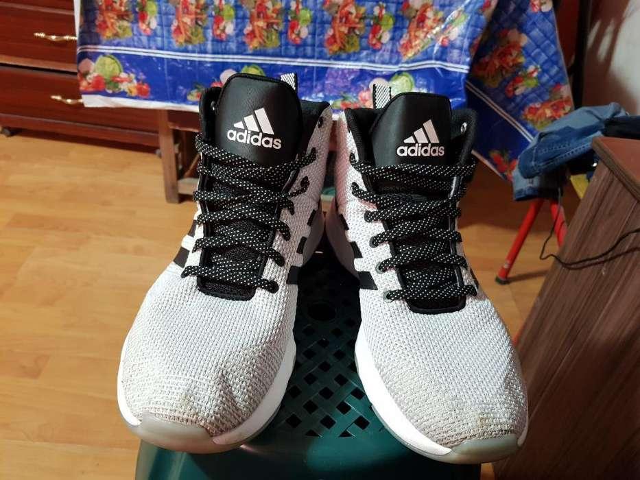 Zapatos Originales Adidas para Basket
