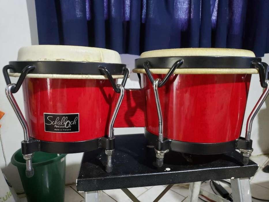 Bongo Schalloch Percusión