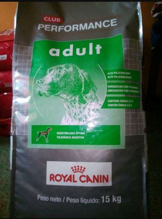 Royal Canin Club Performance Adulto 15 Kg O F E R T A