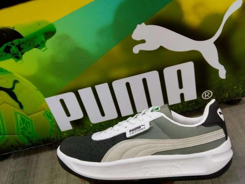 Puma California Importadas