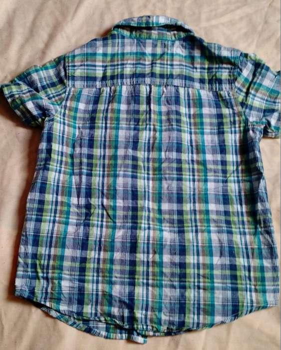 Camisa Niño Talla 8 Marca Harvest