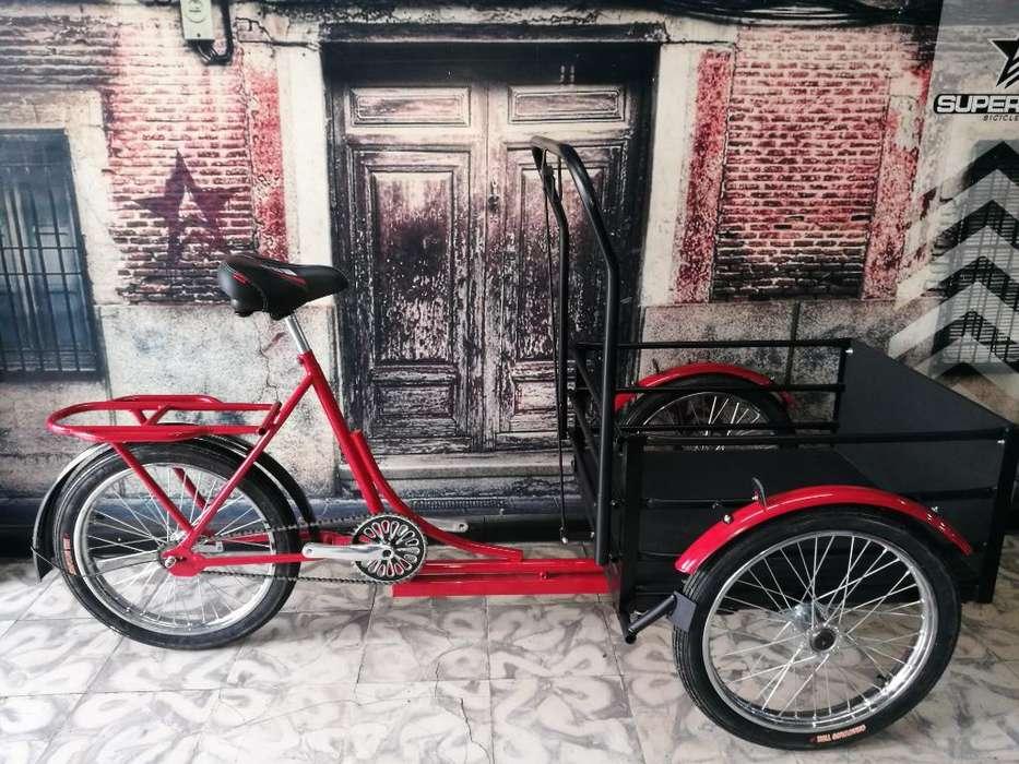 Triciclo de Carga 160 Kg