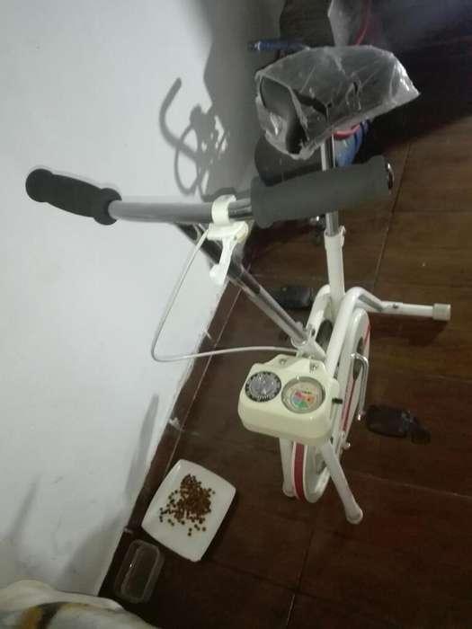 Bicicleta de Gimnasia