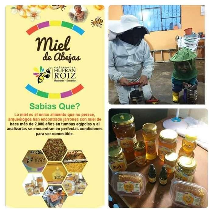 Miel de abejas polen propoleos jalea real cera de abejas pan de abeja