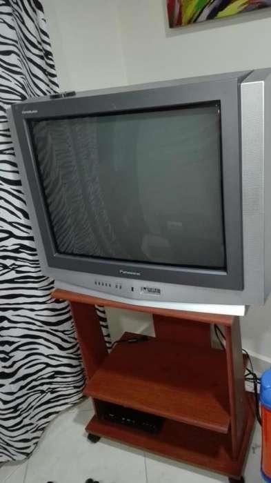 Se vende TV marca panasonic 29 pulgadas con mesa de soporte negociable