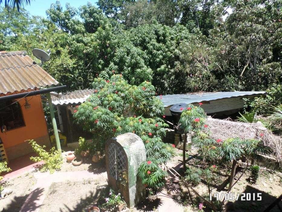 Arriendo Casa Finca Habitable Ibague via San Bernardo