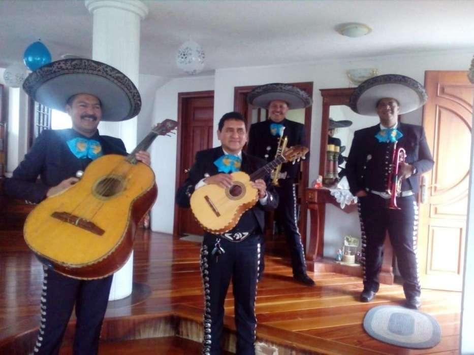 Mariachi Show Los Huastecos