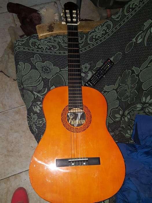 Guitarra Criolla Valencia