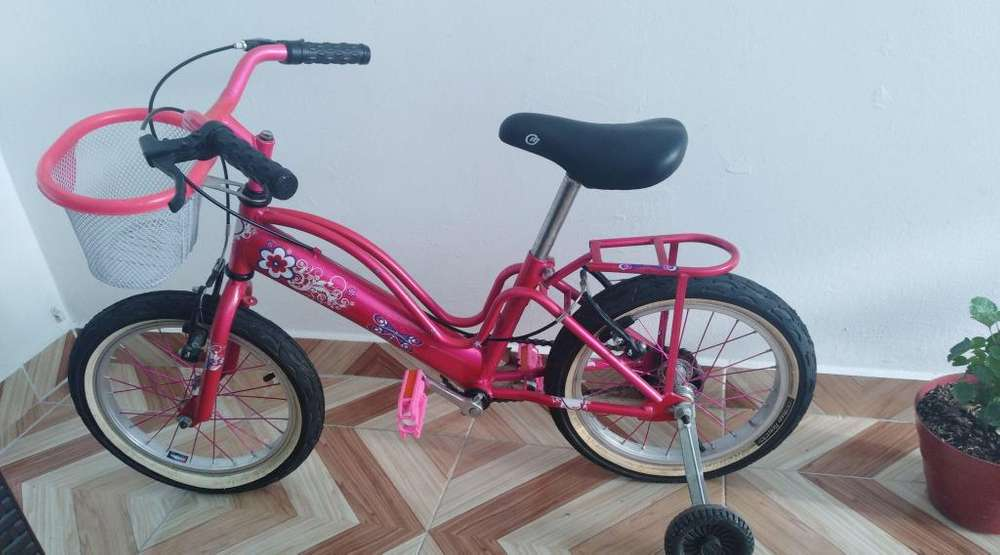 Se Vende Bicicleta Y Patines