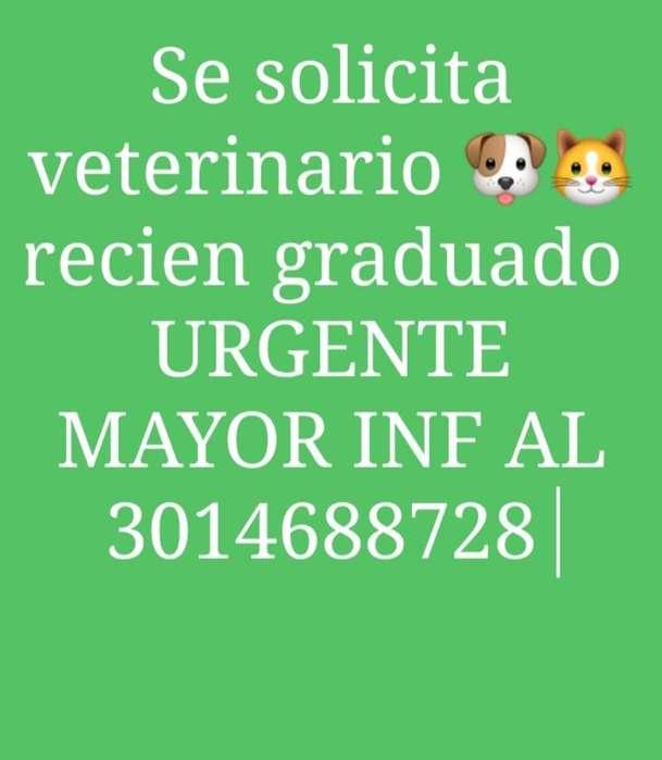 Se Solicita <strong>veterinario</strong> Urgente
