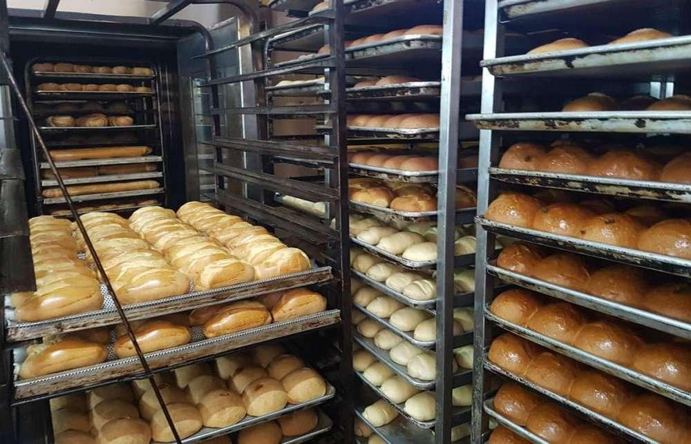 Se Necesito Panadero.