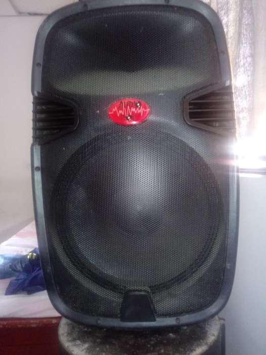 Bafle Amplificador