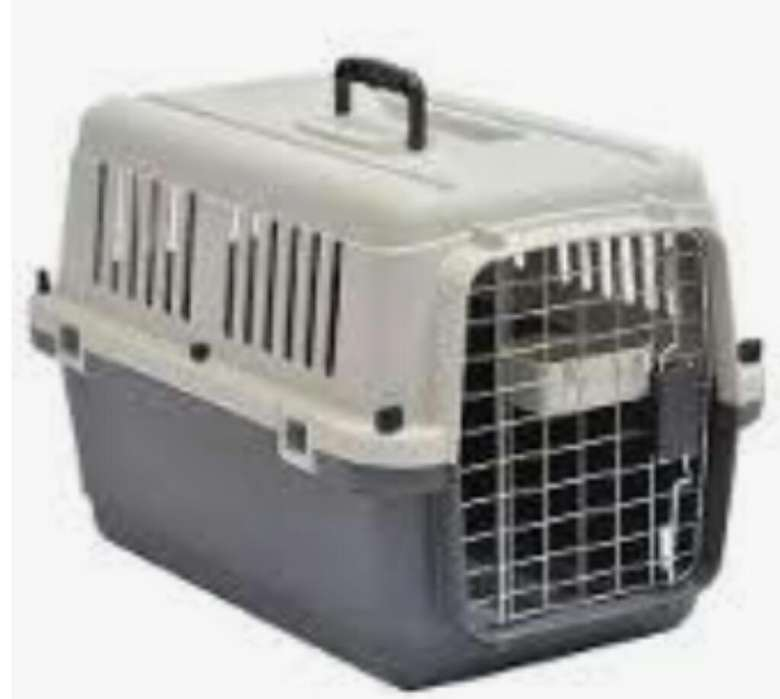 Kennel Transportador L55 Cumple Iata