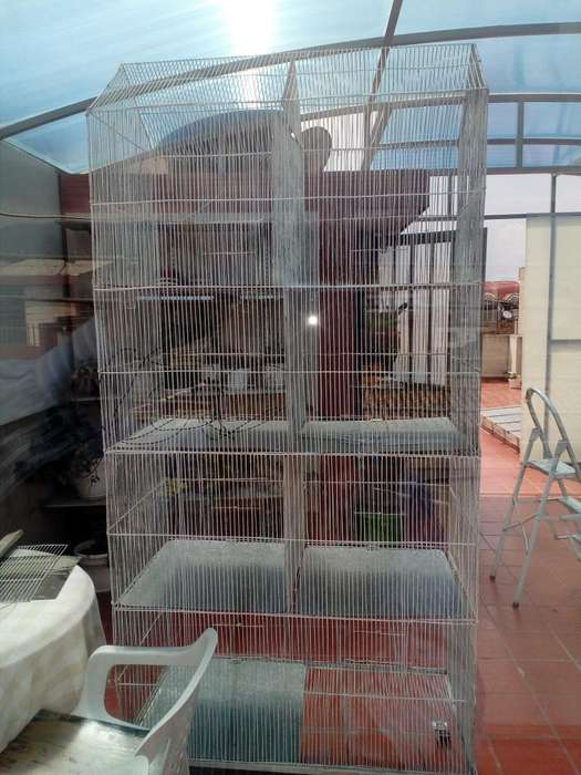 Vendo jaula gigante para pajaros