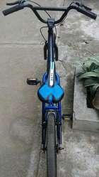 Bicleta Economica
