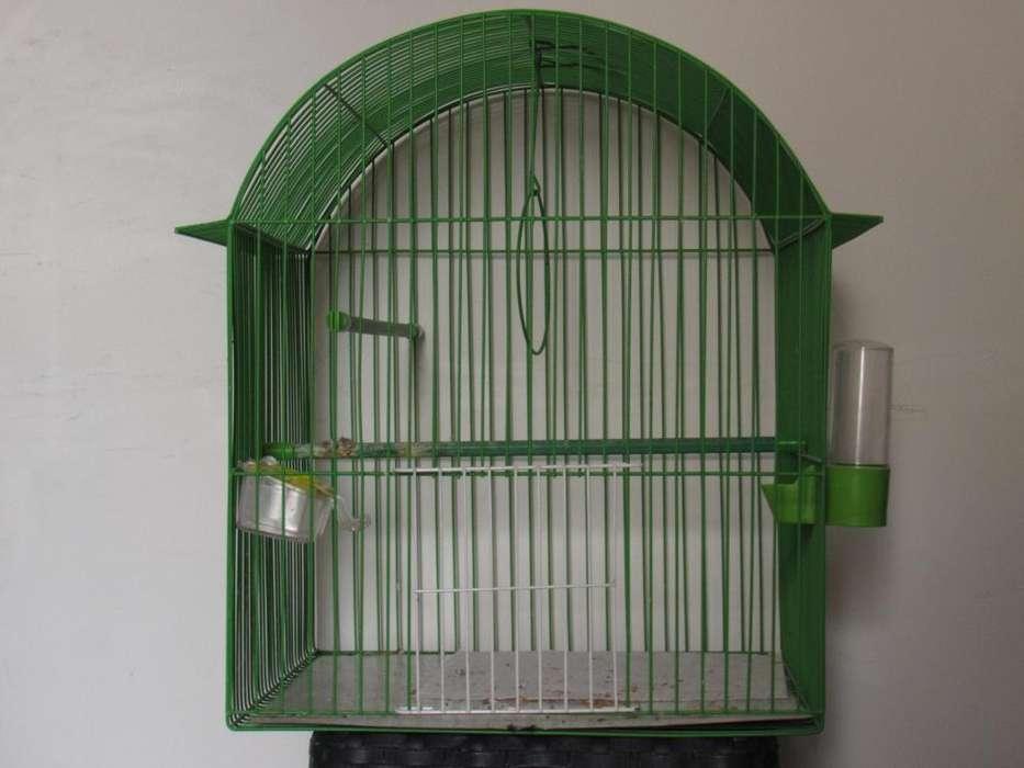 venta de jaula para pajaros